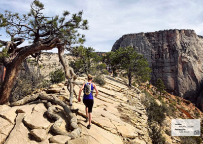 west_rim_trail_zion