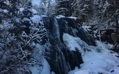 Featured Trail: Bells Canyon Lower Falls
