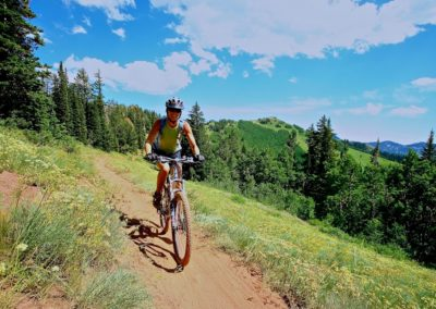 Wasatch Wander and Wasatch Overland Trails
